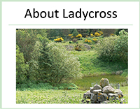 About Ladycross